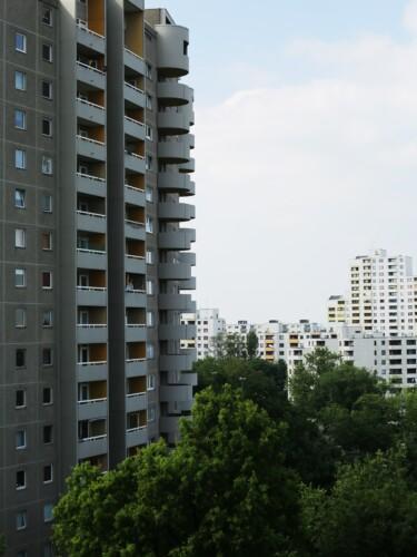 Plattenbauwohnungen und Baumkronen