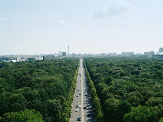 Luftaufnahme vom Tiergarten mit Berlins Skyline im Hintergrund